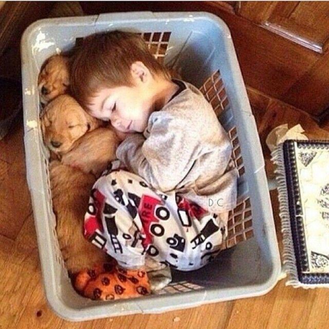 children-sleeping-in-unusual-places.jpg.pro-cmg.jpg